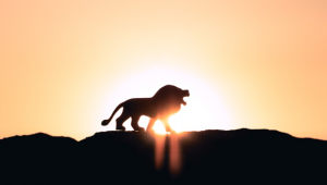 Be the Lion, Not the Antelope: Beat your Fear of Speaking